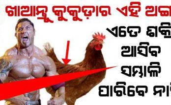 Chicken month